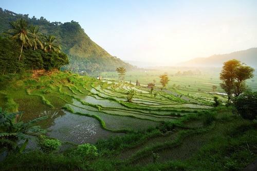 Остров Бали, видео, фото, цены, путевки