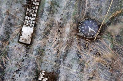 Германия обнародовала свои данные о гибели малайзийского «Боинга» под Донецком