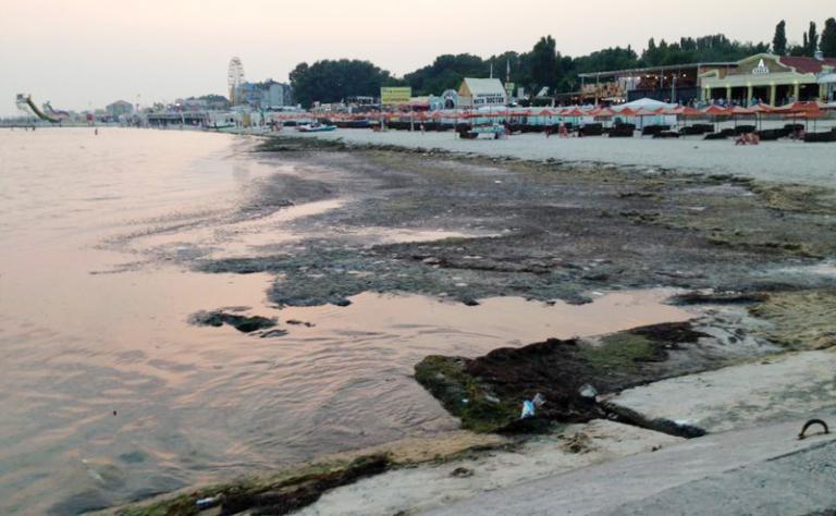 Херсон пляж гниль болото