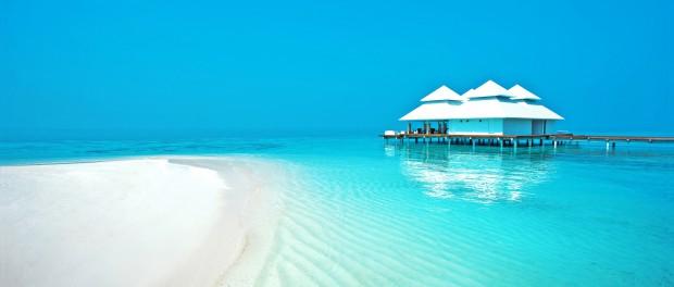 Конкурс: новогодняя путевка на двоих «Мальдивы»