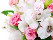 заказ свежих цветов, купить букет, заказ букетов на дом