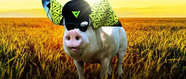Вельд жертвует деньги фермерским животным