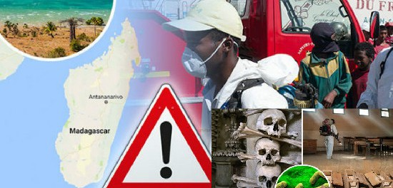 Легочная чума в Мадакаскаре оказалась рукотворной