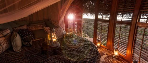 В Кении появился отель «птичье гнездо»