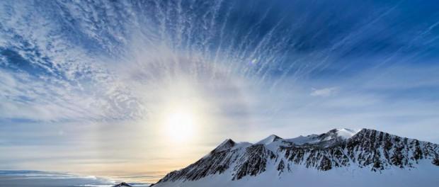 Геологи обнаружили окаменелости из 13 древних древесных пород в Антарктиде