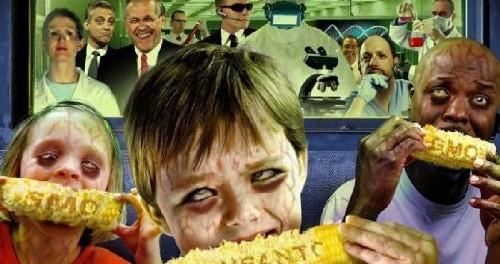 ГМО продукты начали проникать в ДНК человека