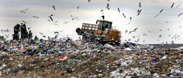 Как и кто зарабатывает на мусорных свалках