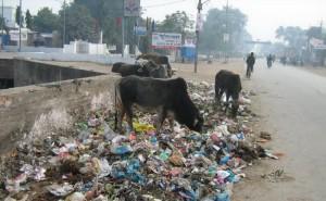 мусор на улицах Индии