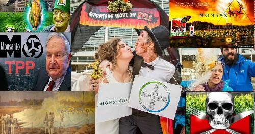 Объединение уродов корпорации Bayer и Monsanto