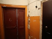 Екатеринбург мумия три года