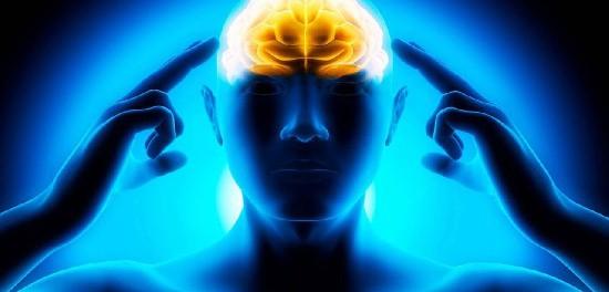 Мы фактически ничего не знаем о нашем мозге
