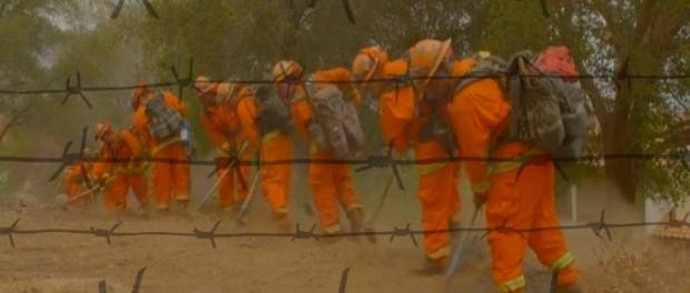 На пожары в Калифорний начали кидать зеков