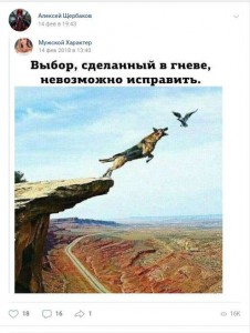 Травля Алексея щербакова вконатке