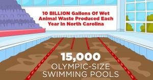 15 000 полных плавательных бассейнов олимпийского размера