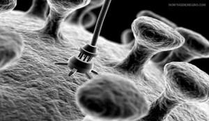 новое прорывное лекарство клетки чипы