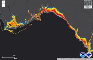 районы, находящиеся под угрозой урагана Майкла