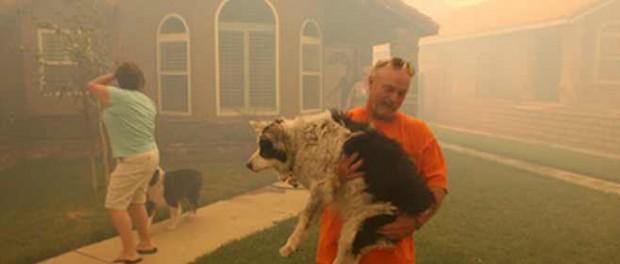 Погибшие жители Калифорнии так и не получили SMS о пожарах
