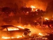 пожары в Калифорнии видео