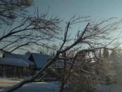 Екатеринбург погода морозы