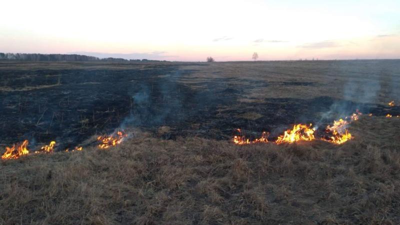 Киевская область пожары