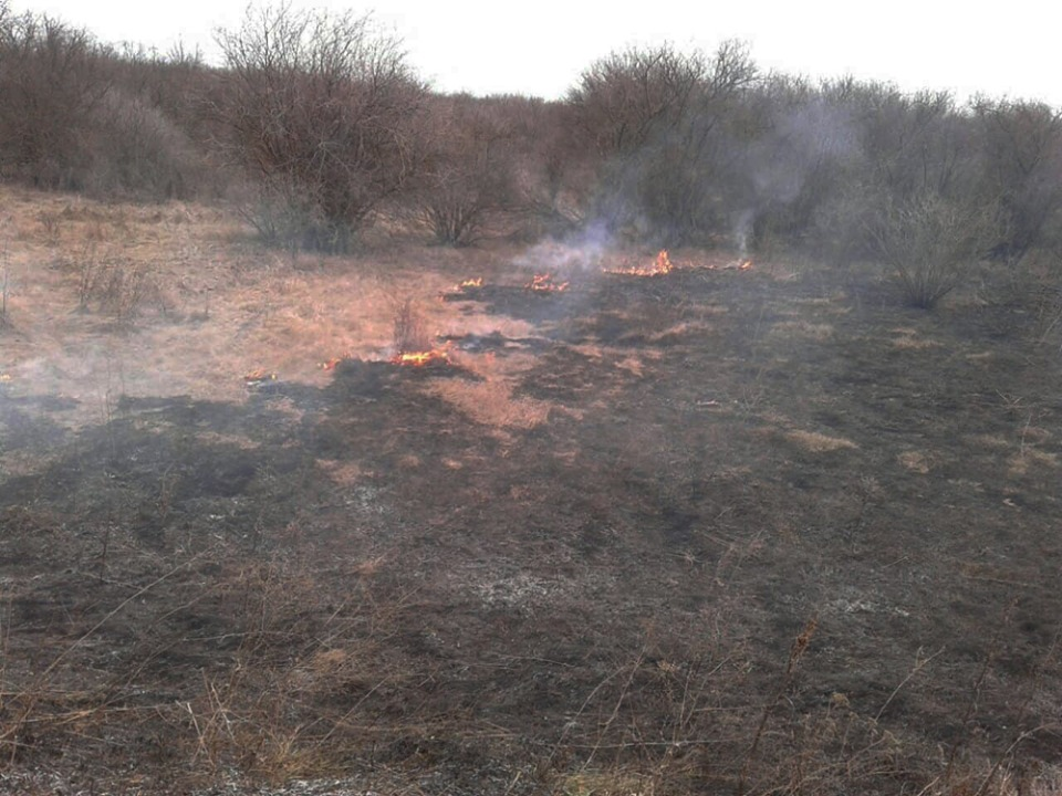 Николаевская область пожары