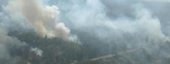 Кто с орбиты сжигает леса Чернобыля и Украины