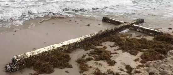 Флорида: на пляж прибыло новое знамение Конца Света