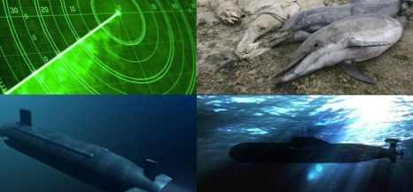 От подводной войны в Атлантике гибнет все живое