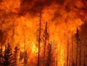Пожары ВвЧили видео