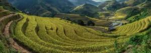 Риссовые плантации Банауэ, Филиппины
