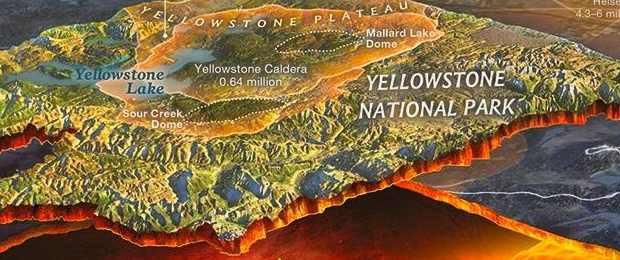 Йеллоустоун: на территории лес начал вымирать