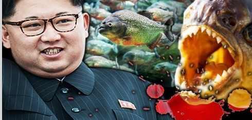 Предателей в Северной Корее бросают пираньям