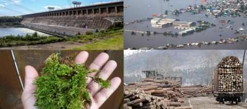 Наводнение в Иркутской области из-за вырубки лесов