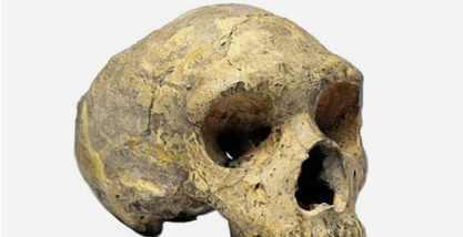 Загадочные истоки древних людей