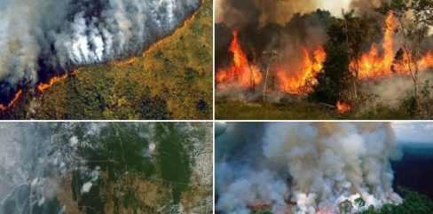 Пожары лесов в России перекинулись на другие страны