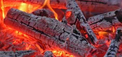 Деревья в Йеллоустоун начали гореть