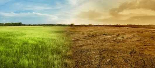 Зачистка от жителей планеты Земли необратима