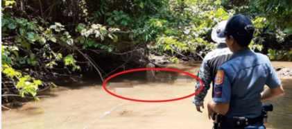 Гигантский крокодил съел заживо молодого рыбака