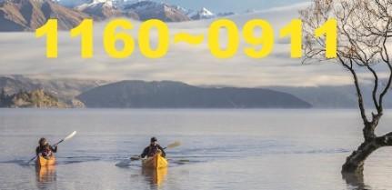 1160 директоров CEO сбежали в Новую Зеландию