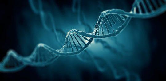 Новая раковая мутация в «темной материи» генома рака