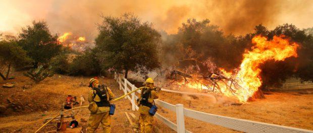 Новый гель позволяет нам распространять антипирен перед началом пожаров