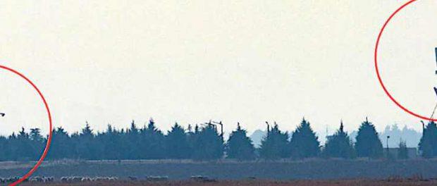 Турция начала испытания S-400 на F-35