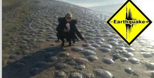На Черном море ожидается землетрясение