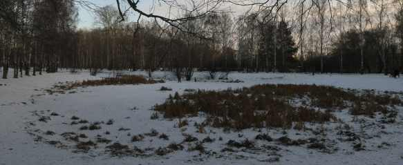 Убийство 9 летнего ребенка Екатеринбург