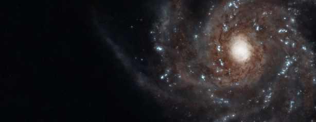 Новая сверхновая в созвездии Ореон погубит Землю