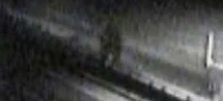 Полиция пыталась накрыть еще одного снежного человека