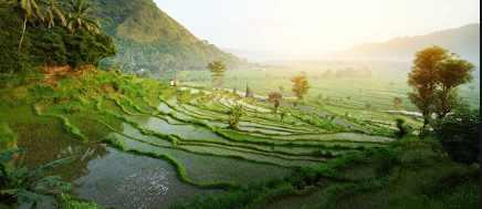 Как путешествовать по Бали
