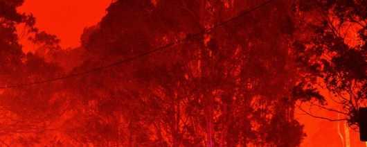 Крах туризма в Австралии из-за пожаров