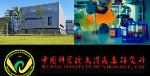 Коронавирус nCoV2019 был создан в биолаболатории в городе Ухань