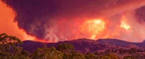 В Австралии население готовят к эвакуации из-за новых пожаров